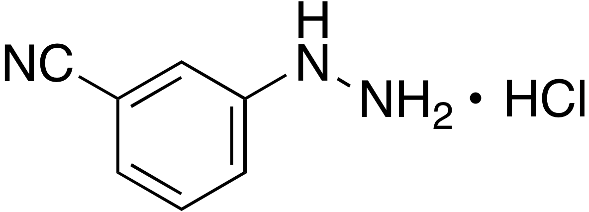 3-Cyanophenyl hydrazine hydrochloride