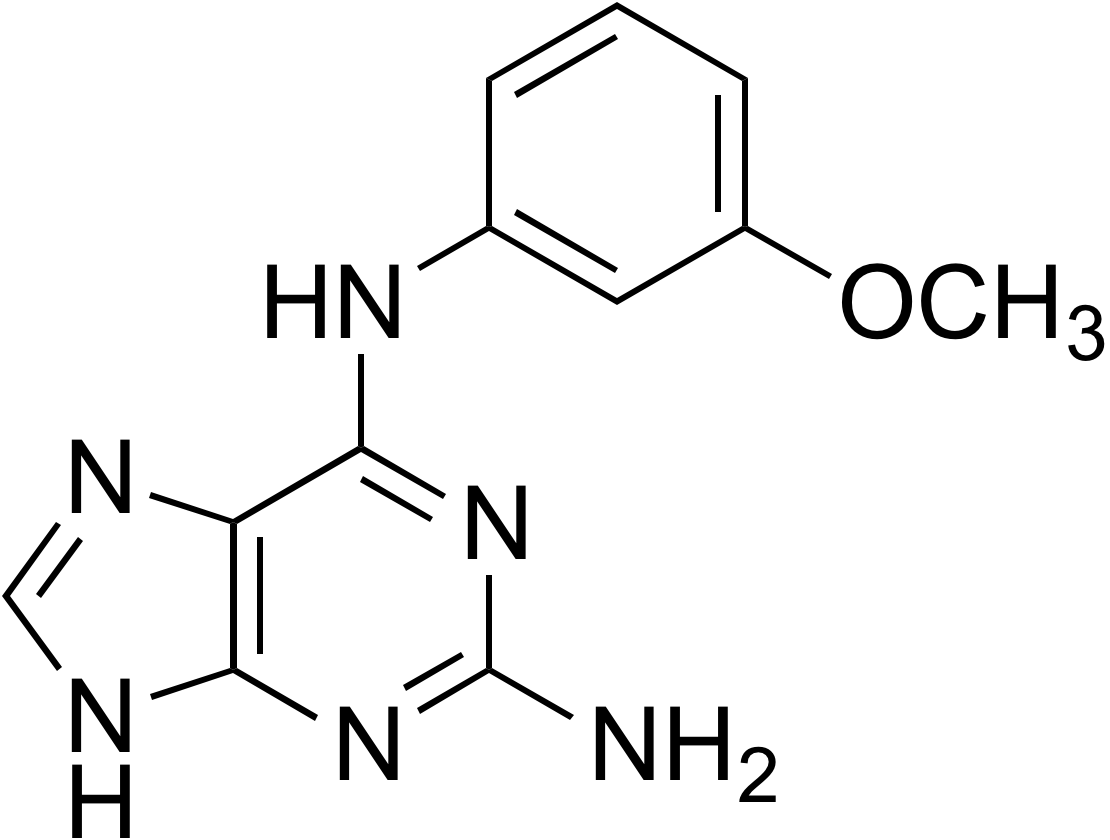 2-Amino-6-(3-methoxyanilino)purine