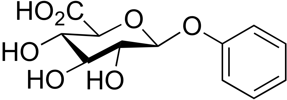 Phenyl-β-D-glucuronide