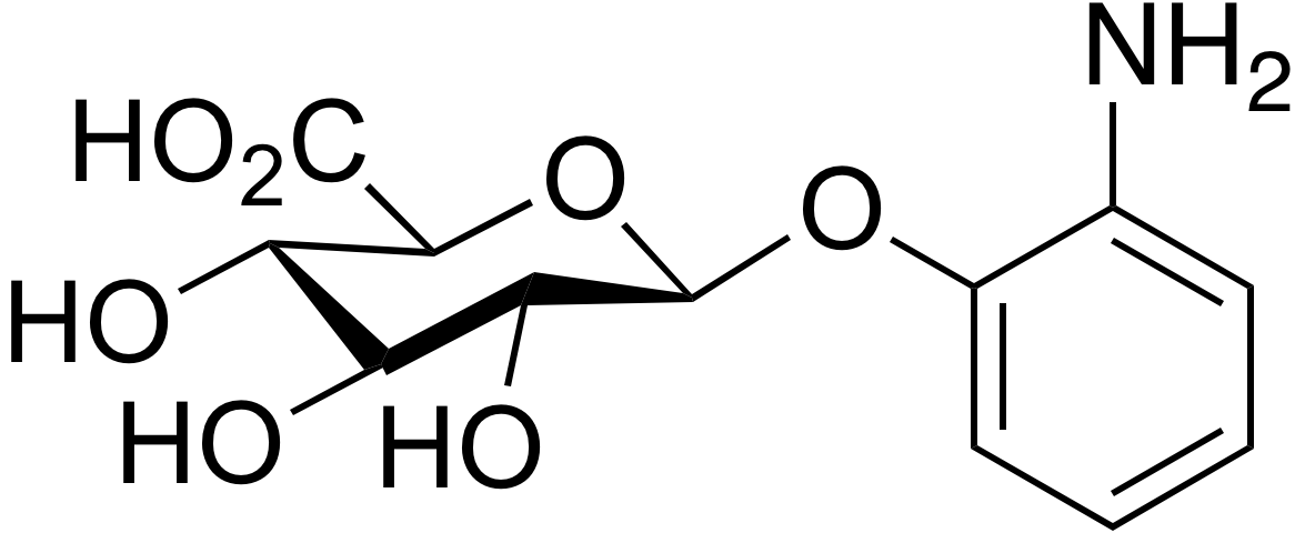 2-Aminophenyl β-D-glucuronide