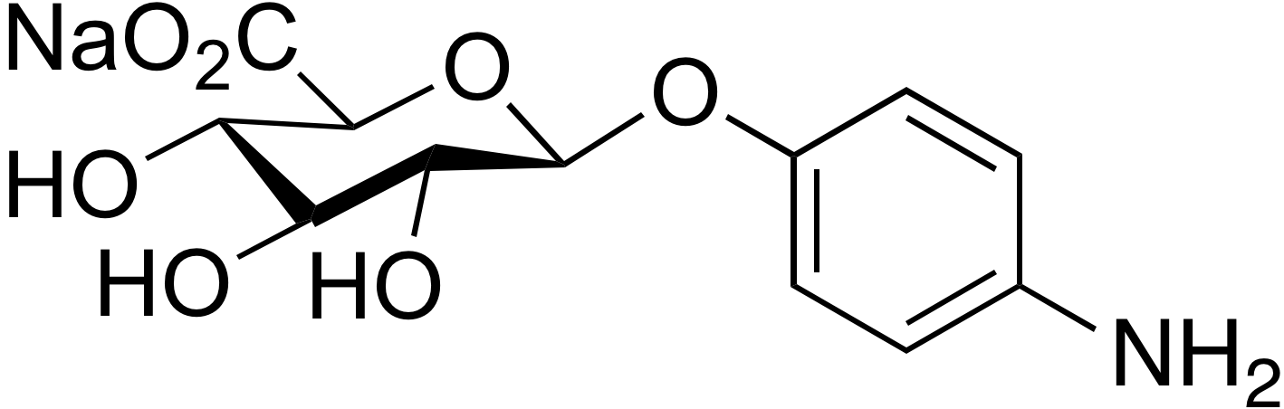 4-Aminophenyl β-D-glucuronide sodium salt